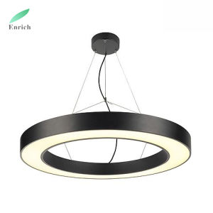 Top Quality Led Lighting Fixtures Round Shape Circline Light Modern Ring