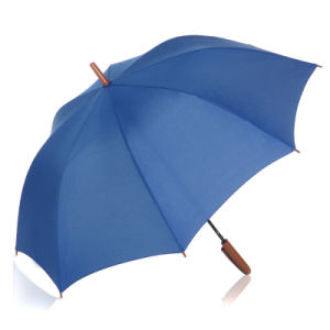 Auto Open Pure Color Wood Handle Straight Umbrella (BD-33) pictures & photos