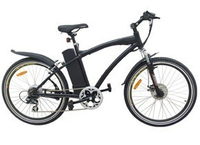 36V Electric Mountain Bike Mountain Ebike (TDE03Z)