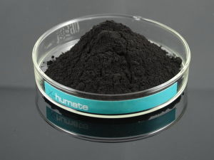 Black Shiny Compound Humic Acid Granular pictures & photos