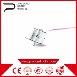 Hot China DC Step Magnet Pm Micro Motor