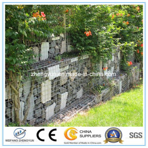 Stone Box / Gabion Baskets / Gabion Box