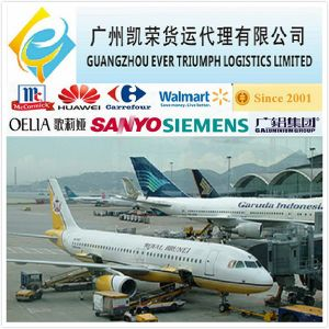 China Freight Forwarder/Logistic Shipping Company to USA