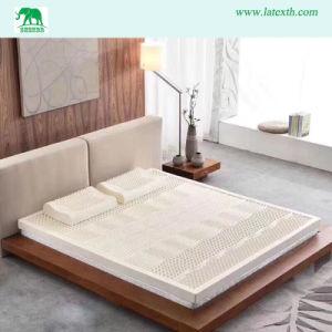 Pure Natural Thailand Sofa Bed Latex Mattress Producer