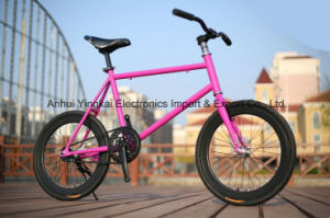 20 Inch Mini Fixed Gear Bicycle, Coast Brake Bike (YK-FG-011)