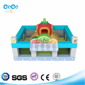 Popular-Style Cocowater inflatable Fruit Station Bouncer/Slide for Kindergarden LG9038