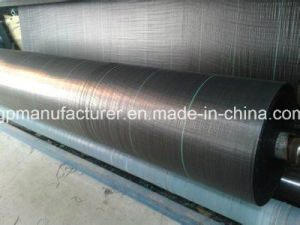 PP Weed Control Fabric of Woven Geotextile pictures & photos