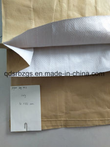 Paper-Plastic Compound PP Woven Bag for Chemical, Cement, Mineral pictures & photos