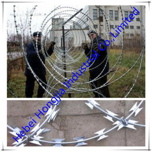 High Quality and Lou Price Razor Wire