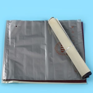 High Quality Printed Ziplock Plastic Bags for Garments (FLZ-9226)