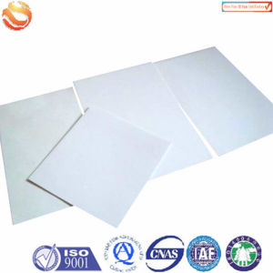 GRP Gel Coated Panels pictures & photos