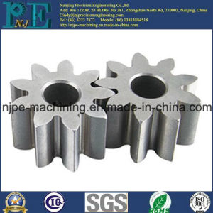 Non-Standard Precision Stainless Steel Sintered Gear