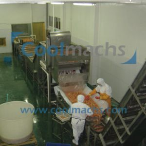 Quick Frozen IQF Freezer Production Line for Shrimp/Seafood/Fish pictures & photos