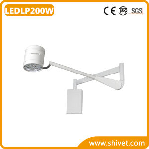 Veterinary Cold Light Operating Lamp (LEDLP200W) pictures & photos