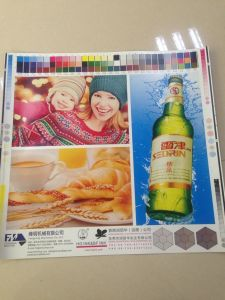 Hamburger Box Flexographic Printing Machine pictures & photos