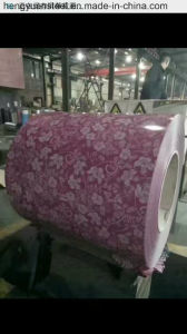 Big Flower PPGI Color Coated Steel Coil Prepainted Sheet pictures & photos