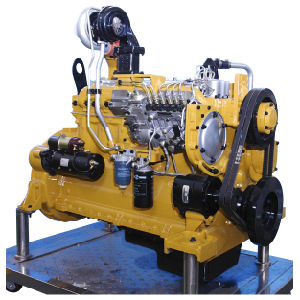 CAT 3306 Engine and Cat Spare Parts pictures & photos
