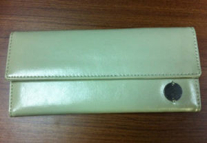 PU Vinyl Purse /Clutch Bag (4UWT018)