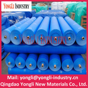 Waterproofing PE Tarpaulin, Covering Plastic Canvas Poly Tarp, Anti-UV Protective Lona pictures & photos