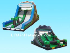 Inflatable Slide Bouncer (LY07234)