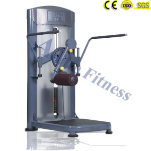 Indoor Fitness Equipment of Standing Rotary Calf /Body Solid pictures & photos