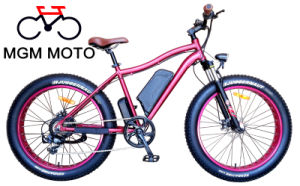 48V 500W Fat Tire Mountain Electric Bicycle