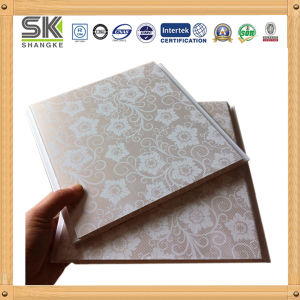 Plastic Panel for Wall and Ceiling Decoration