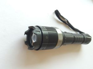 Electric Shock Stun Taser with Rechargeable Battery (8810) pictures & photos