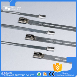 Ss316 Coated Metal Cable Ties