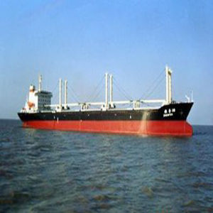 Efficient and Professional Shipping Company to Barcelona, Spain pictures & photos