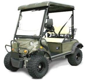 New Arrival! Electric Hunting Vehicle with 2 Seats Plus Style pictures & photos