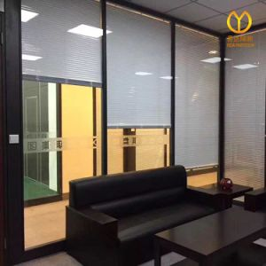 Acoustic Double Office Glass Fixed Partition Wall with Rolling Shutter