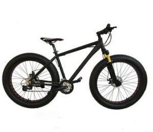 High Grade Cr-Mo or Aluminum Alloy Fat Tire Mountain Bike pictures & photos