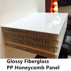 Gelcoat FRP PP Honeycomb Panel for Wall pictures & photos