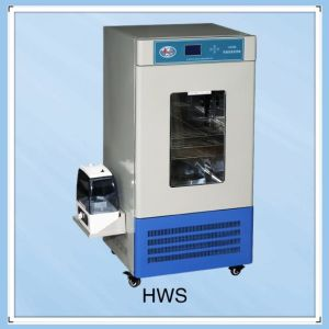 Various Kinds High Quality Lab Incubator with Most Favorable Price