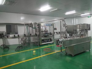 Full Automatic 2000L Juice Bottling Line pictures & photos