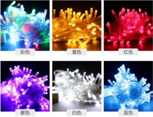 Indoor or Outdoor Green Palm LED Christmas Fairy Lights pictures & photos