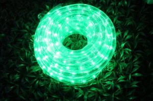LED Rope Light 2wires Green pictures & photos