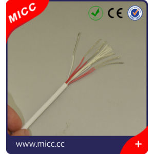 Thermocouple Extension Wire (RTD-TEF/TEF-4/0.6 X 6) pictures & photos