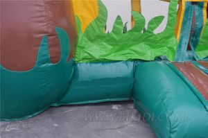 Waterslide Commercial Inflatable Combo, Strawberry Design Moonwalk, Air Balloons pictures & photos