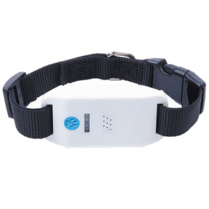 Pet GPS Tracker with Waterproof Ipx6 (AT-2)