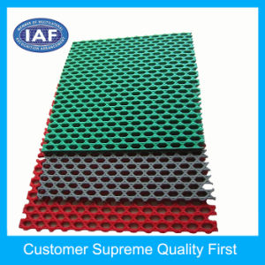 Custom Floor Mat Plastic Extrusion Mould for Single Screw Sheet Extruder Line pictures & photos