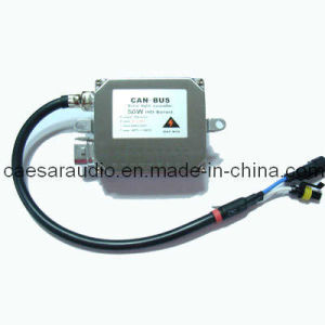 Can Bus HID Ballast (CB-50C)