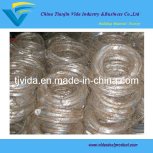 Galvanized Wire with 0.3kgs Per Coil Packing, 10 Coil Per Bundle (BWG25)