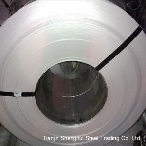 Premium Quality Stainless Steel Coil (AISI316) pictures & photos