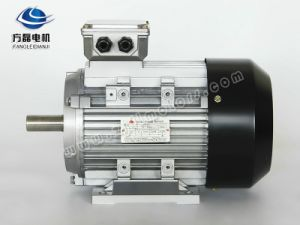 Yx3 Aluminum Electric Motor 3 pictures & photos