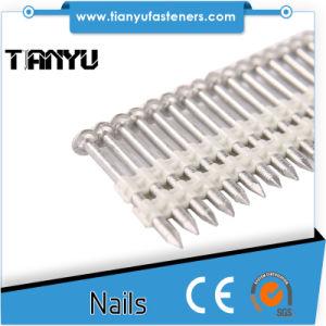 Plastic Strip Casing Head Ring Shank Nails
