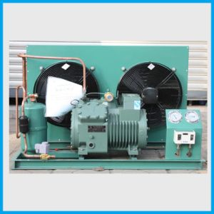 Condensing Unit for Low Temperature Cold Storage of Meat
