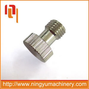Supply High Quality Spray Stainless Steel China Screw Manufacturer pictures & photos