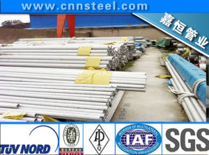 316L (0Cr17Ni14Mo2) , Ss316L, Tp316lstainless Steel Tube/Pipe
